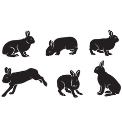 Silhouettes hare vector
