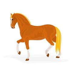 Sorrel-horse vector image