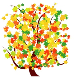 autumn - fall tree vector image