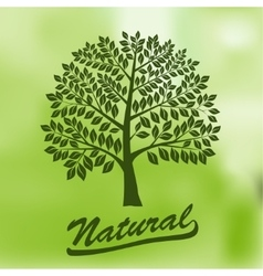 Tree with a Round Crown - Ecology Natural vector image vector image