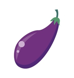 Eggplant Isolated on White vector image