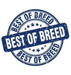 Best of breed blue grunge stamp vector