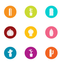 cactus icons set flat style vector image
