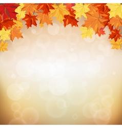 Maple fall vector