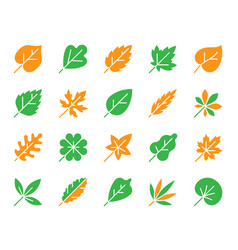 organic leaf simple color flat icons set vector image