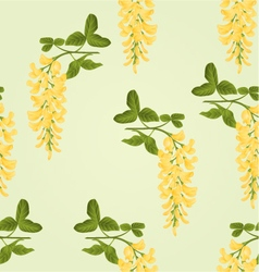 Seamless texture Laburnum branch decorative shrub vector image