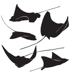 Stingray silhouette vector