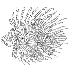 Zentangle stylized cartoon zebrafish vector image