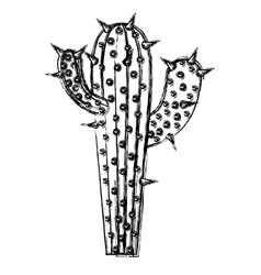 monochrome blurred silhouette of cactus with two vector image