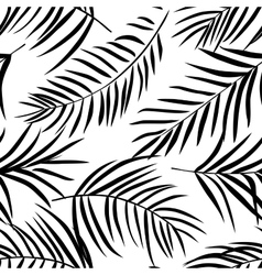 Tropical palm leaves black and white vector image