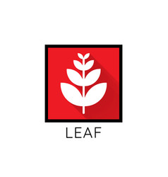 growth leaf logo icon leaf in red square concept vector image