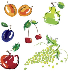 hand drawn fruit vector image vector image
