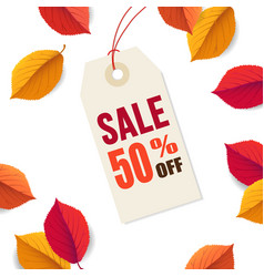autumn sale 50 off tag template falling bright vector image