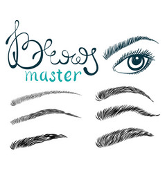 Beautiful female long eyelashes and brows vector