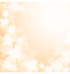 Beautiful orange flower background vector image