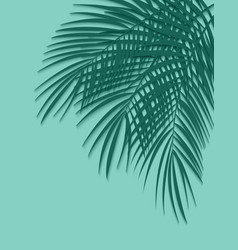 beautiful palm leaf background vector image