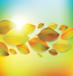 Colorful background with autumn colorful leaves vector