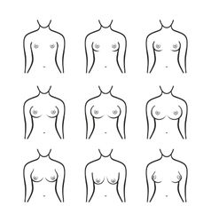 Female Breast Set Different Types Size and Form vector image
