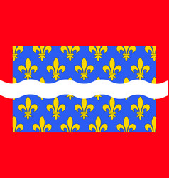 Flag of cher in centre-val de loire france vector
