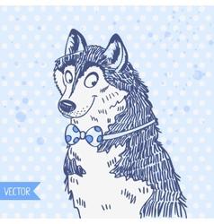Husky vector