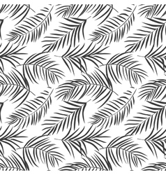 tropical palm leaves isolated on white Seamless vector image