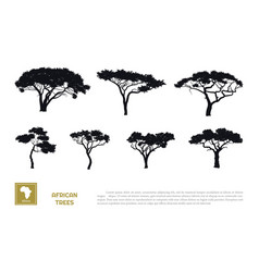 black silhouettes african trees vector image
