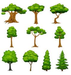 Diversity of trees set vector