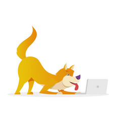 funny dog with laptop raises its tail up vector image