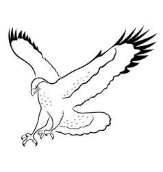 hawk in attack vector image