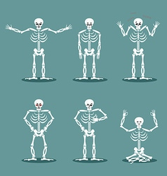 Skeleton set of different poses Expression of dead vector