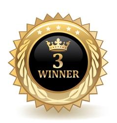 Third Place Winner vector