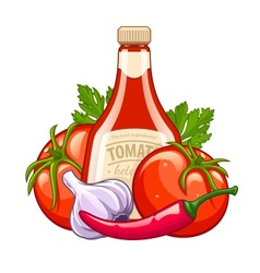 Bottle with tomato ketchup vector image