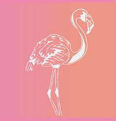 Hand-drawn bird flamingoengraving stencil style vector