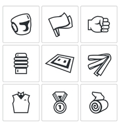 Set of Karate Icons Helmet Flags Fist vector image vector image