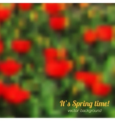 Spring background with red tulips vector image