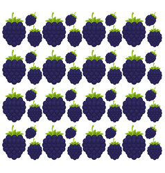 Blackberry seamless pattern design vector