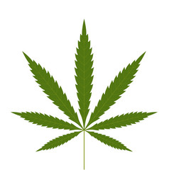Cannabis leaf icon green silhouette indica sativa vector