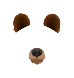 Ears and nose of brown bear mask of wild forest vector