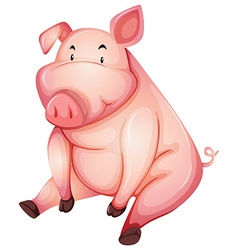 Fat pig sitting alone vector image