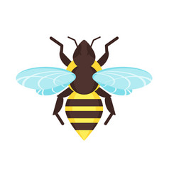 flat style of bee vector image