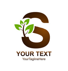 letter s logo design template colored brown green vector image