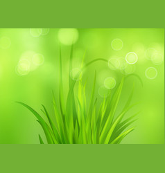 spring bright green background with fresh vector image