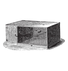 Mouse cage vintage engraving vector image vector image