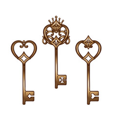 vintage heart shaped bronze antique skeleton keys vector image