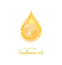 Drop of oil isolated on white background vector image