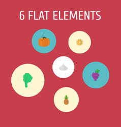 Flat icons citrus ananas onion and other vector