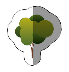 Color natural tree icon vector