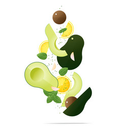 flying fresh avocados and spices concept vector image