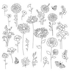hand drawn botanical flowers black outline vector image