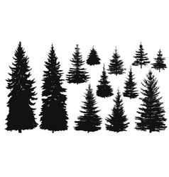 Set pine trees vector